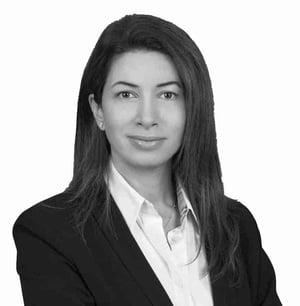 Carine Ghandour | Organisational Culture