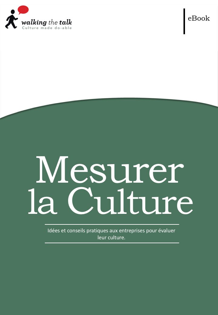 Jérôme Parisse-Brassens partage les idées et des conseils pratiques dans cet rapport sur la manière dont les organisations peuvent mesurer leurs cultures.