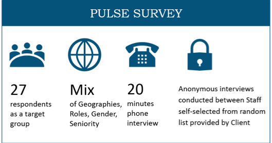 Government agency - pulse survey