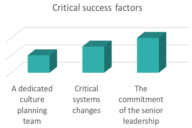 IRT - success factors