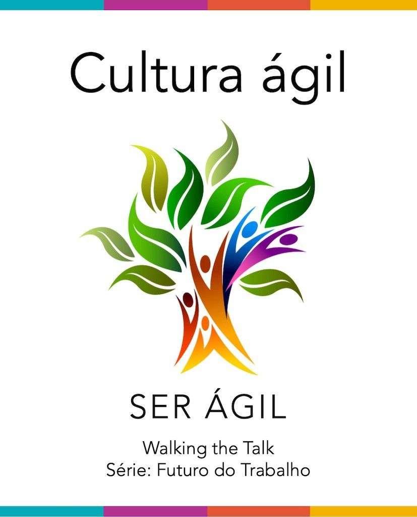 Agile culture portuguese report