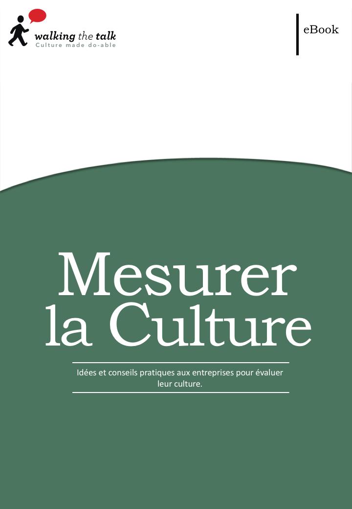 MESURER LA CULTURE | LIVRE ÉLECTRONIQUE