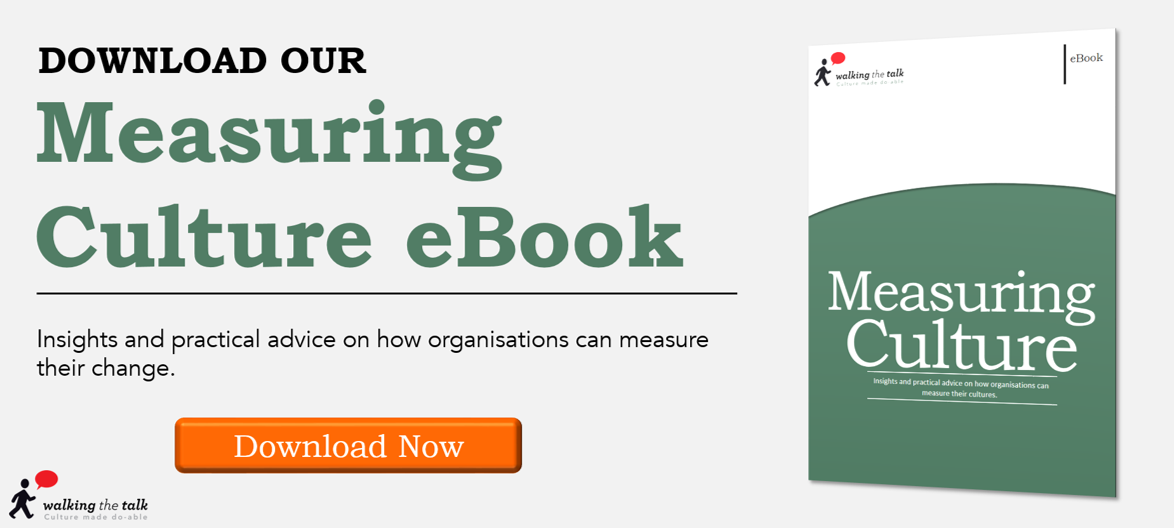 Download Walking the Talk's free Measuring Culture eBook