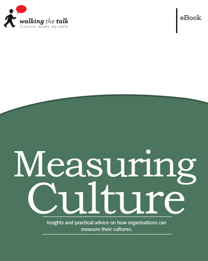 Measuring Culture ebook