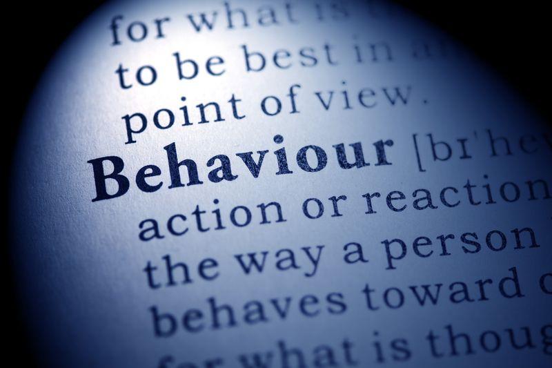 Key Behaviour | Program | Organisational Culture